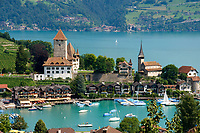 CHE, Schweiz, Kanton Bern, Berner Oberland, Spiez: Schloss Spiez und Schlosskirche am Thunersee | CHE, Switzerland, Bern Canton, Bernese Oberland, Spiez: castle Spiez with castle church at Lake Thun