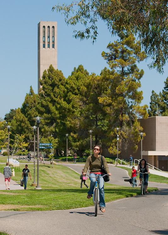 Bicycle, Bike Path, Student Life