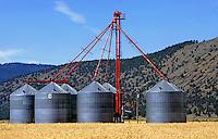 Grain silos in a wheat field - DORIS, CALIFORNIA