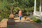 Caucasian woman walking golden retreiver down quaint sidewalk in spring