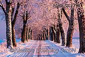 Christmas - landscapes photos