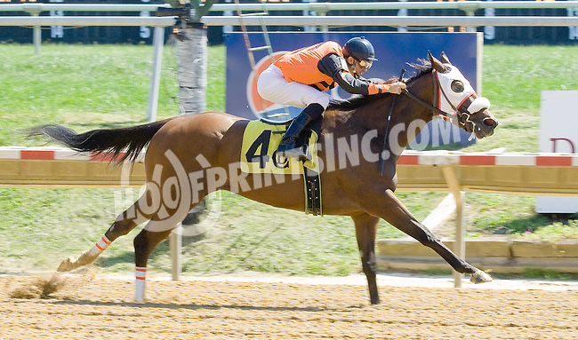 Fill Up Cohen winning at Delaware Park on 9/12/12