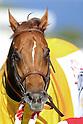 Horse Racing: JBC Sprint