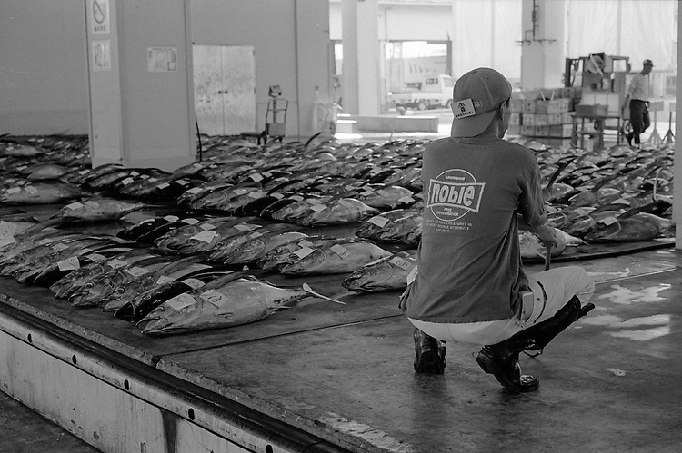 Noble - Early Morning at the Katsuura Fish Market