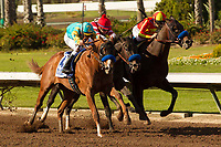 CYPRESS, CA  DECEMBER 9: <br />  #5 McKinzie, ridden by Mike Smith, wins the Los Alamitos Cash Call Futurity (Grade l) by disqualification on December 9, 2017, at Los Alamitos Race Course in Cypress, CA. (Photo by Casey Phillips/ Eclipse Sportswire/ Getty Images)