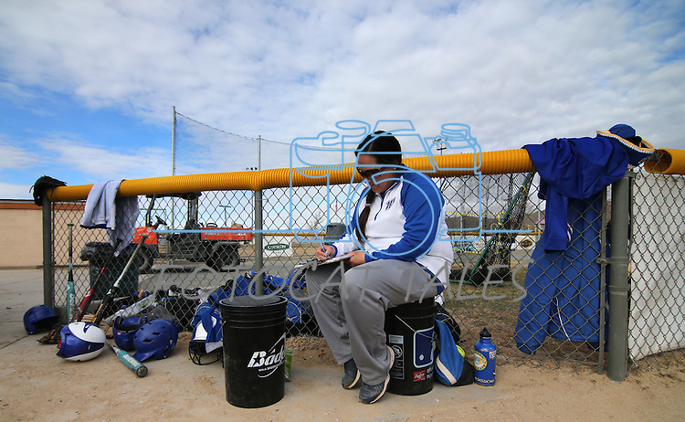 Western Nevada College's head softball coach Leah Wentworth works in between games against Colorado Northwestern on Friday, Feb. 22, 2013, in Carson City, Nev..Photo by Cathleen Allison