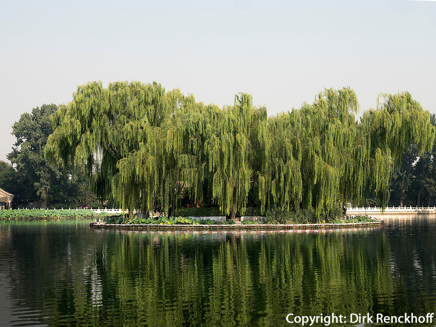 Am See Qian Hai, Peking, China, Asien<br /> Qian Hai lake, Beijing, China, Asia