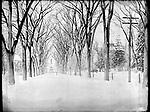 Frederick Stone negative. Winter 1895.