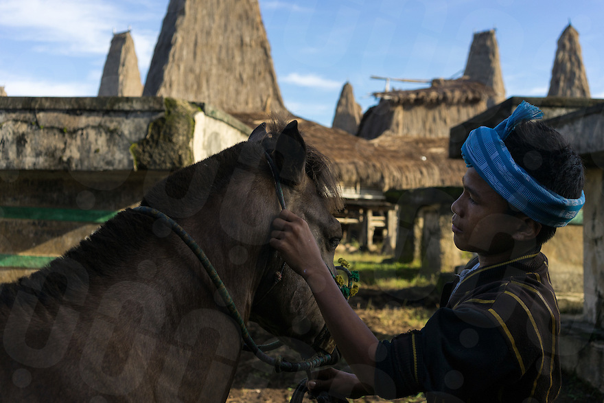 March 26, 2016 - Wainyapu (Indonesia). Peter prepares his horse for the first (of the three) Pasola hold in the nearby village of Ratenggaro. Peter participated in the Pasola for the first time 3 years ago and rides a horse that belongs to his uncle. © Thomas Cristofoletti / Ruom