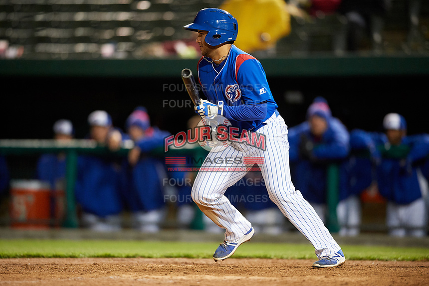 South Bend Cubs shortstop Vimael Machin (19) squares around to bunt during a game against the Clinton LumberKings on May 6, 2017 at Four Winds Field in South Bend, Indiana.  South Bend defeated Clinton 7-6 in nineteen innings.  (Mike Janes/Four Seam Images)