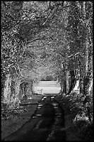 Woodland Road, Co.Cavan