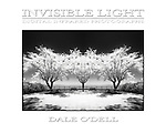 Invisible Light Infrared Photography Book