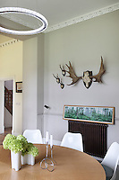 A small collection of hunting trophy sculls on the grey dining room wall