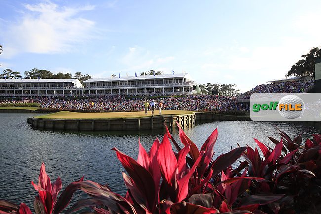 Ken Duke (USA) and Alex Cejka (GER) during the final round of the Players, TPC Sawgrass, Championship Way, Ponte Vedra Beach, FL 32082, USA. 15/05/2016.<br /> Picture: Golffile | Fran Caffrey<br /> <br /> <br /> All photo usage must carry mandatory copyright credit (&copy; Golffile | Fran Caffrey)