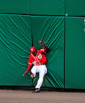 24 April 2010: Washington Nationals' outfielder Willie Harris pulls in a Russell Martin fly ball in the 11th inning during a game against the Los Angeles Dodgers at Nationals Park in Washington, DC. The Dodgers edged out the Nationals 4-3 in a thirteen inning game. Mandatory Credit: Ed Wolfstein Photo