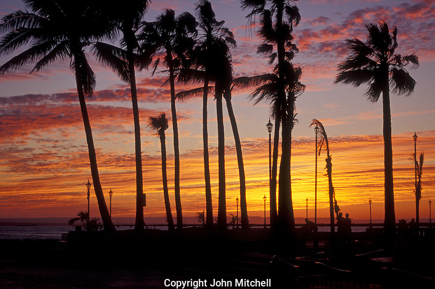 Sunset on the Malecon seaside promenade in the city of La Paz, Baja California Sur, Mexico