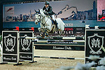 Michael Whitaker of United Kingdom riding Viking at the the Massimo Dutti Trophy during the Longines Hong Kong Masters 2015 at the AsiaWorld Expo on 15 February 2015 in Hong Kong, China. Photo by Juan Flor / Power Sport Images