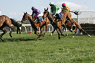 Taunton Races - 12th April 2011