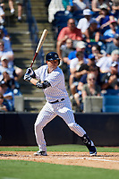 New York Yankees catcher Kyle Higashioka (66) at bat during a Grapefruit League Spring Training game against the Toronto Blue Jays on February 25, 2019 at George M. Steinbrenner Field in Tampa, Florida.  Yankees defeated the Blue Jays 3-0.  (Mike Janes/Four Seam Images)