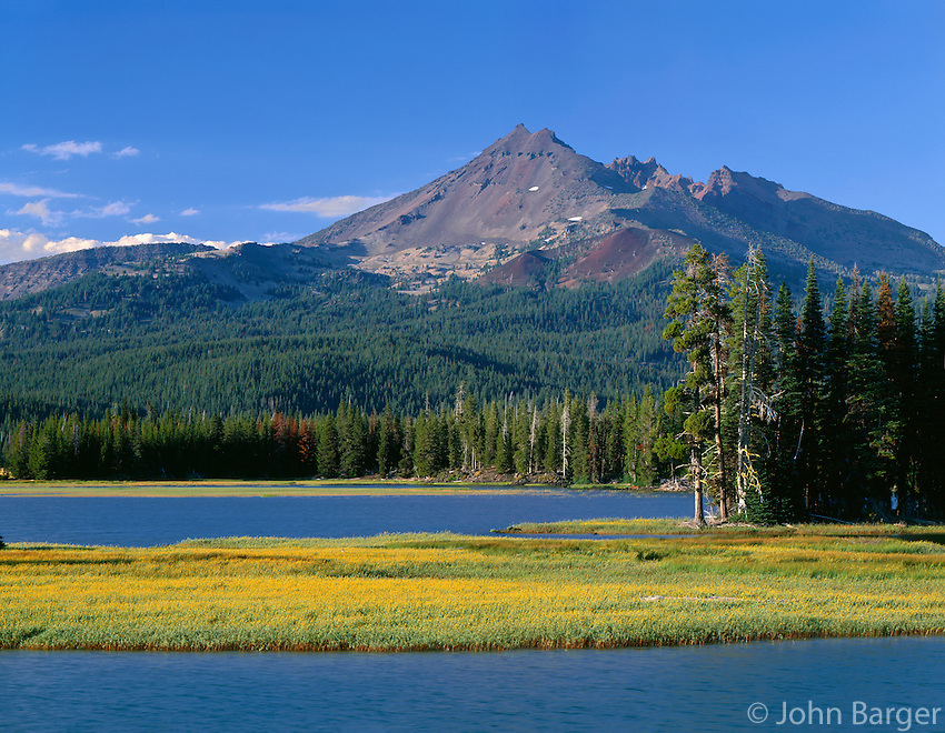 ORCAC_083 - USA, Oregon, Deschutes National Forest, Leafy arnica blooms on an island in Sparks Lake with Broken Top rising in the distance.