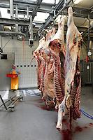 GERMANY hanging cows at butcher / DEUTSCHLAND geschlachtete Rinder bei einem Fleischer