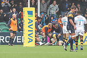 10th September 2017, Sixways Stadium, Worcester, England; Aviva Premiership Rugby, Worcester Warriors versus Wasps; Tom Heathcote of Worcester Warriors and his team mates think he has scored only for the referee to disallow the try for crossing