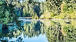 Fishing bridge seen across Lake Sylvia reflections, Lake Sylvia State Park, Montesano, WA