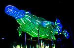 Platypus lantern during the Vivid 2016 Sydney Festival at Taronga Zoo, Sydney Australia.