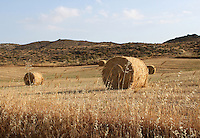 Stock image - Hay rolls lying in farm at the feet of a hill in Cyprus.