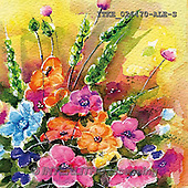 Isabella, FLOWERS, BLUMEN, FLORES, paintings+++++,ITKE026470-ALE-S,#f# ,everyday