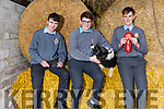 CBS students  Mike Carroll, Padraig Crean and Michael Kirby who won 1st prize in the BT Young Scientists with book and module on Farm Safety.