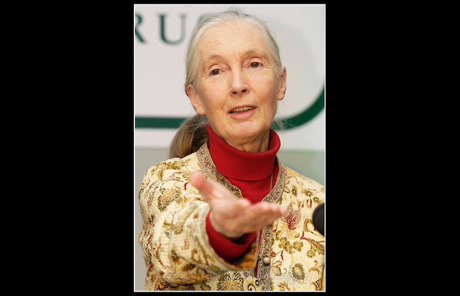 Dr Jane Goodall DBE - Animal Science and Sentience Conference - Compassion in World Farming (CIWF) - Queen Elizabeth II Conference Centre, London - 17th March 2005