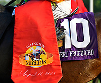 ARLINGTON HEIGHTS, IL - AUGUST 11 #10, Robert Bruce (CHI), ridden by Irad Ortiz, wins the G1 Arlington Million S. at Arlington Park on August 11, 2018 in Arlington Heights, IL. (Photo by Jessica Morgan/Eclipse Sportswire/Getty Images)