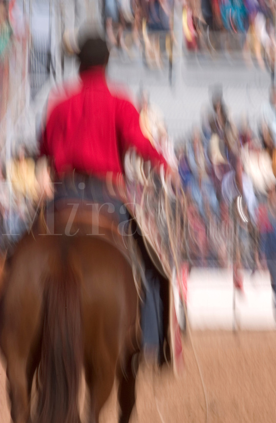 Cowboys show off roping, dress and gear before the Tucson Rodeo competition in Tucson, Arizona. ...