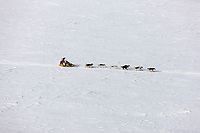 Musher Mitch Seavey crosses the tundra north of the Gold Run checkpoint on the way to Candle during the 2008 All Alaska Sweepstakes sled dog race.