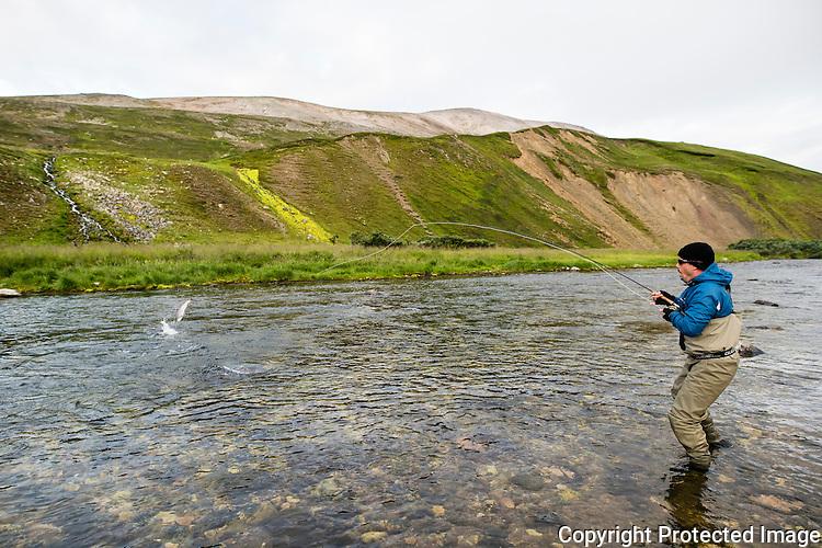 Mann kjører mellomlaks i Komagelva. ---- Man fighting salmon in Komagelva.