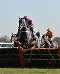25/02/2012 - Racing Plus Chase Day - Kempton Park Racecourse