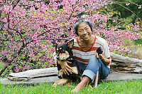 Older local Asian woman smiles while holding her dog and a cell phone in front of a cherry blossom tree, Pa'auilo Mauka, Big Island.