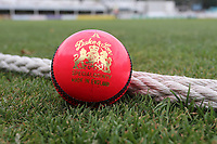 A Duke & Son pink day-night ball down by the boundary during Essex CCC vs Warwickshire CCC, Specsavers County Championship Division 1 Cricket at The Cloudfm County Ground on 22nd June 2017
