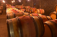 The barrel aging cellar with rows of barriques with aging wine.  Domaine M Chapoutier, Tain l'Hermitage, Drome Drôme, France Europe