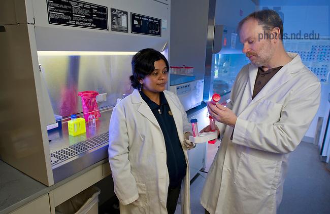 Jan. 3, 2013; Prof. Jeff Schorey and Prachi Pratap Sing in a lab. Photo by Barbara Johnston/University of Notre Dame