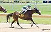 Jive Partner winning at Delaware Park racetrack on 7/5/14