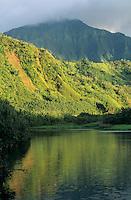 Hanalei River in Hanalei Valley, Kauai, Hawaii, USA