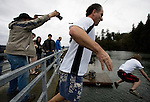 Peninsula Gateway Photographer Lee Giles (L) takes pictures of Drew Irvine (C) and Mike Viatore (R)  as they jump off the bridge during the 26th annual Polar Bear jump into the Burley Lagoon in Olalla, Washington on 1 January  2010. Over 300 hardy participants  braved the chilly lagoon waters to join in on the annual New Year's Day Tradition.  Jim Bryant Photo. ©2010. ALL RIGHTS RESERVED.
