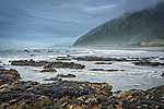Motukiekie Beach on the rugged west coast of the south island of New Zealand
