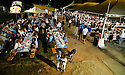 SAGRA DEL &quot;PESCE E PATATE&quot; 2011, BARGA, ITALY<br /> <br /> FISH, CHIPS AND FUN LATE INTO THE EVENING.