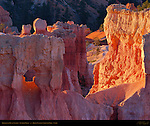 Iridescent Fin in Queen's Garden at Sunrise from Sunrise Point, Bryce Canyon National Park, Utah