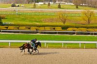 Morning workouts, Keeneland Race Course, Lexington, Kentucky USA