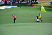 Tyrell Hatton (ENG) chips up tight on 8 during Friday's round 2 of the PGA Championship at the Quail Hollow Club in Charlotte, North Carolina. 8/11/2017.<br /> Picture: Golffile | Ken Murray<br /> <br /> <br /> All photo usage must carry mandatory copyright credit (&copy; Golffile | Ken Murray)