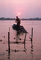 France/13/Bouches du Rhone/Camargue/Parc Naturel Régional de Camargue/Saintes Maries de La Mer: Pécheur sur l'étang à l'aube